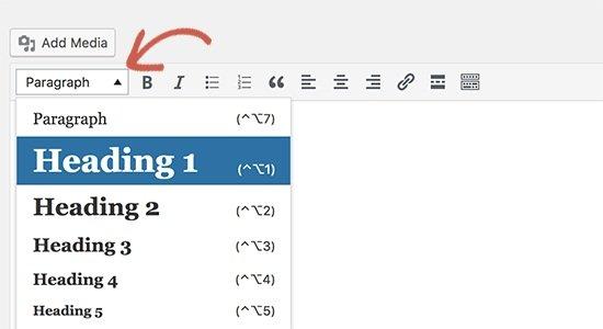 paragraph visual editor